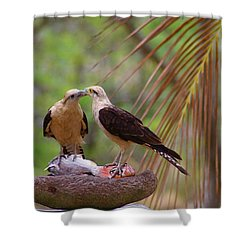 Life Mates Shower Curtain