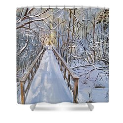 Life's  Path Shower Curtain by Sharon Duguay
