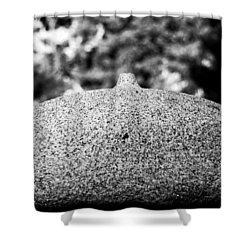 Lifestone Shower Curtain
