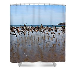 Lift Off Shower Curtain by Bob Hislop