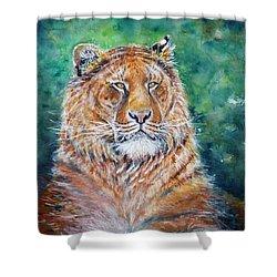 Liger Shower Curtain by Zaira Dzhaubaeva