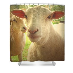 Light And Peace Shower Curtain by Joyce Dickens