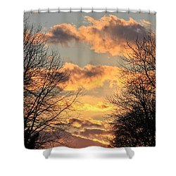 Light Catcher Shower Curtain by Julie Andel
