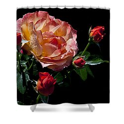 Shower Curtain featuring the photograph Light Family by Doug Norkum