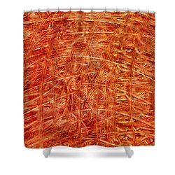 Shower Curtain featuring the mixed media Light Field by Sami Tiainen