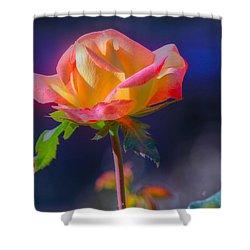 Flower 10 Shower Curtain