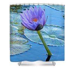 Light Purple Water Lily Shower Curtain by Pamela Walton