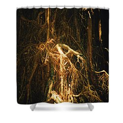 Shower Curtain featuring the photograph Light Roots by Evelyn Tambour