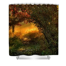 Lighted Path Shower Curtain