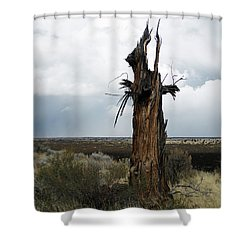 Lightening Strikes Shower Curtain