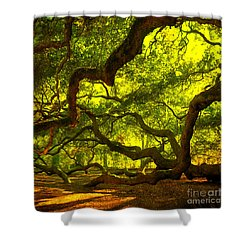 Lighter Version 40x40 Shower Curtain