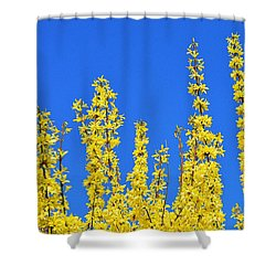 Lighting The Spring Sky Shower Curtain by Felicia Tica