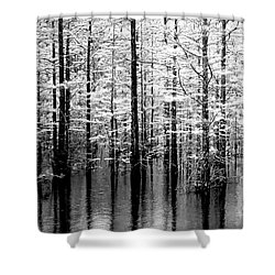 Lightning On The Wetlands Shower Curtain