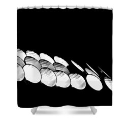 Lights Camera Action Shower Curtain by Matt Harang