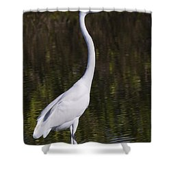 Like A Great Egret Monument Shower Curtain by John M Bailey