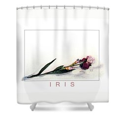 Like A Watercolor Iris Shower Curtain by J R Baldini Master Photographer