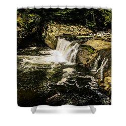 Lil Bald River Falls Shower Curtain