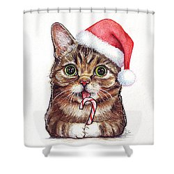 Lil Bub Cat In Santa Hat Shower Curtain