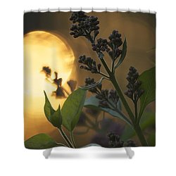 Lilacs At Sunset Shower Curtain by Penny Meyers