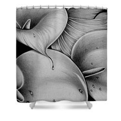 Lilies 3 Shower Curtain