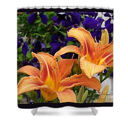 Lilies And Clematis Shower Curtain