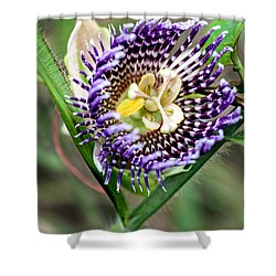 Shower Curtain featuring the photograph Lilikoi Flower by Dan McManus