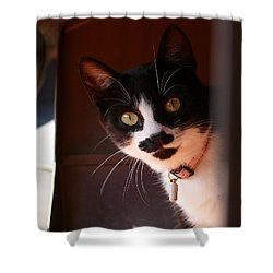 Shower Curtain featuring the photograph Lilly by Evelyn Tambour