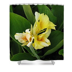 Lilly Of Shreveport Shower Curtain