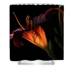 Lily Ambiance Shower Curtain by Donna Kennedy