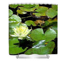 Lily And Amphibian Friend Shower Curtain