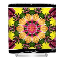 Shower Curtain featuring the photograph Lily And Chrysanthemums Flower Kaleidoscope by Rose Santuci-Sofranko