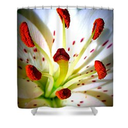Lily Center Shower Curtain by Patti Whitten
