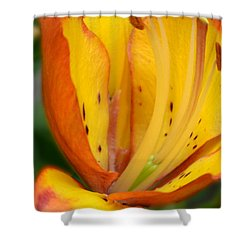 Lily - Close Up Shower Curtain
