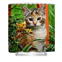 Shower Curtain featuring the photograph Lily Garden Cat by VLee Watson
