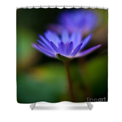 Lily Glow Shower Curtain by Mike Reid