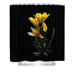 Lily Light Shower Curtain