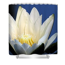 Lily In Blue Shower Curtain
