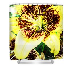 Shower Curtain featuring the photograph Lily Love by Shana Rowe Jackson