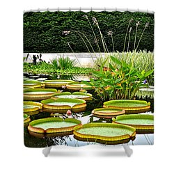 Lily Pad Garden Shower Curtain by Frozen in Time Fine Art Photography