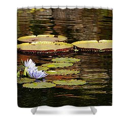 Shower Curtain featuring the photograph Lily Pad by Kathy Churchman
