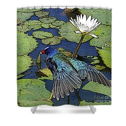 Lily Pad With Bird Shower Curtain