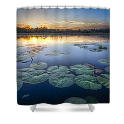 Lily Pads In The Glades Shower Curtain by Debra and Dave Vanderlaan