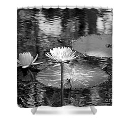 Lily Pond 2 Shower Curtain by Anita Lewis