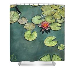 Lily Pond Shower Curtain by David Stribbling