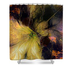 Lily Pond Reflections Shower Curtain by Amanda Moore