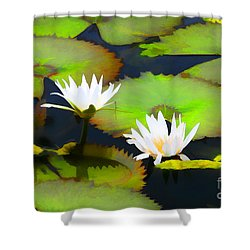 Lily Pond Bristol Rhode Island Shower Curtain by Tom Prendergast
