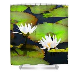 Lily Pond Bristol Rhode Island Shower Curtain