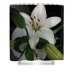 Lily White Shower Curtain