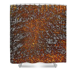 Limbinosity Shower Curtain by Jo-Anne Gazo-McKim