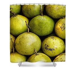 Limes Shower Curtain by Jean Noren